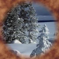 CHODESH TEVES - NITEL